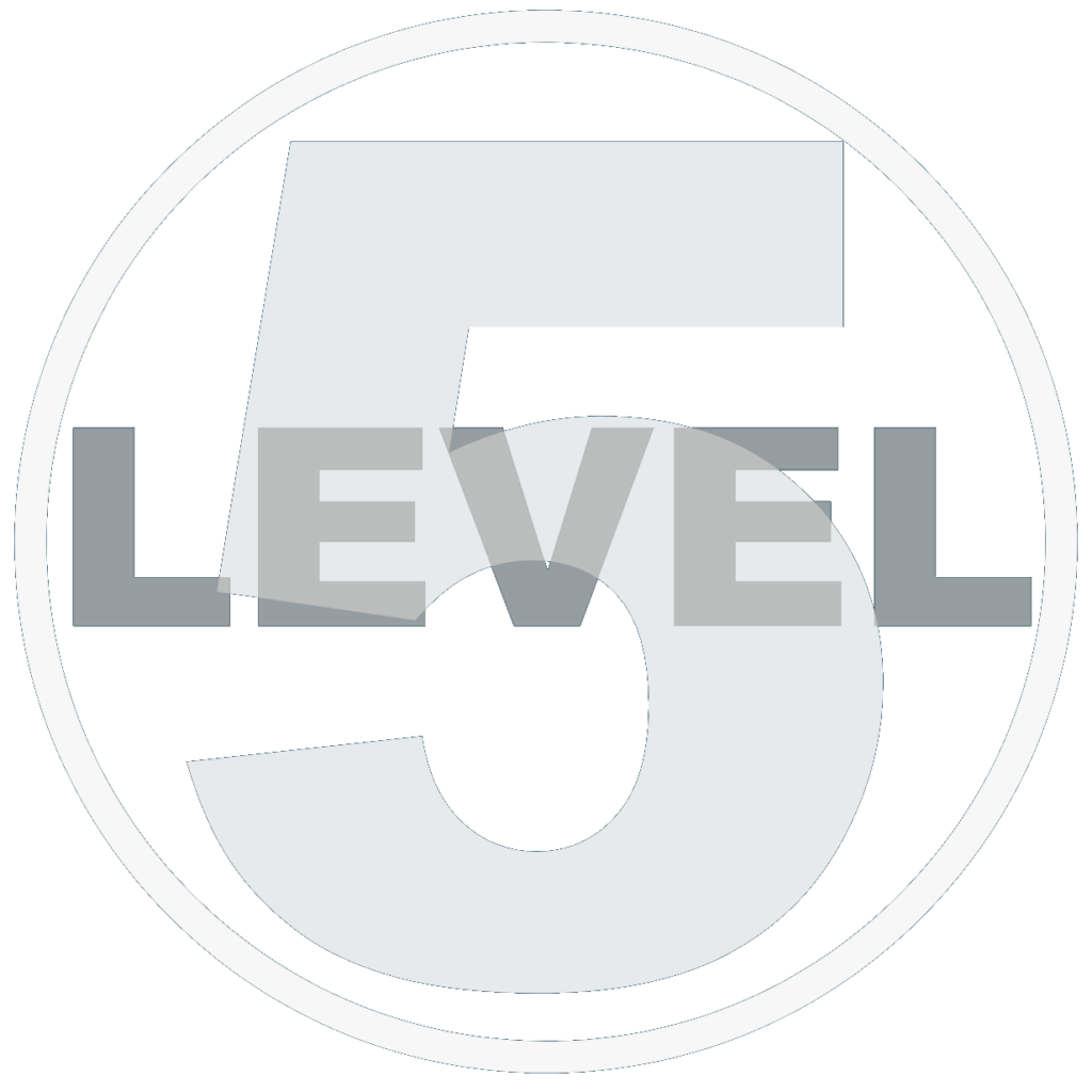 IT Support & Managed IT Services Boca Raton, FL | Level5 Management
