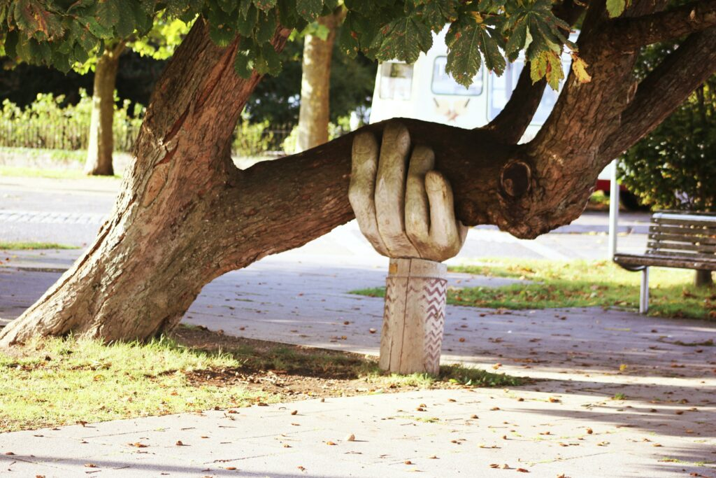 Wooden sculpture of a hand holding up a tree branch, used to illustrate concept of IT support for businesses.